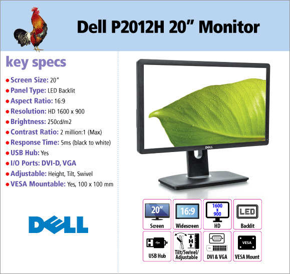 Dell Professional P2012H 20\